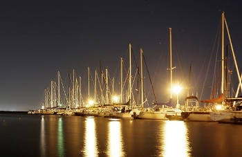 Happenings Around the Harbor